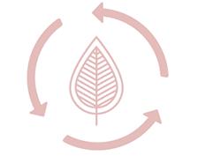 Plissee und Jalousien nachhaltige Lösungen